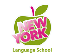 new york school logo